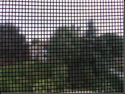 DSCF0226_screen[1]