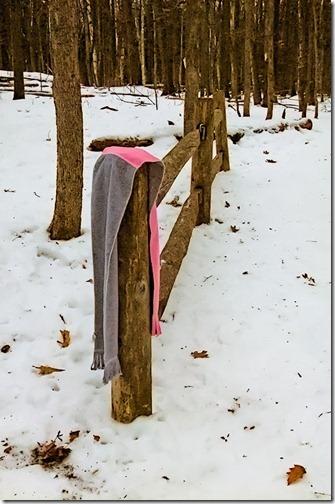 DSCF2370_lost_scarf