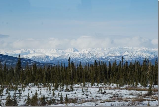 04-25-09  B Alaskan Highway - Yukon 025