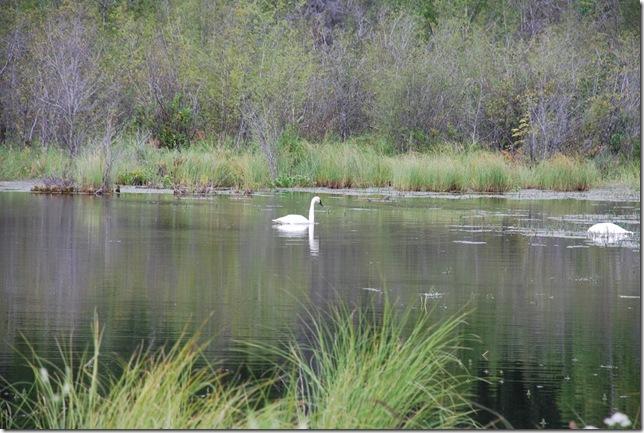 08-15-09 A Knik River 007