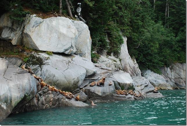08-27-09 Trip to Juneau 039