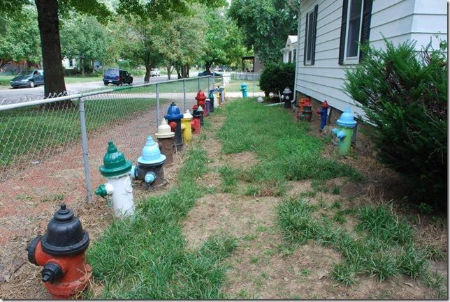 09-21-10 C Fire Hydrant Garden in Topeka 012