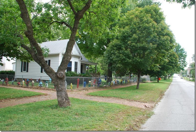 09-21-10 C Fire Hydrant Garden in Topeka 001