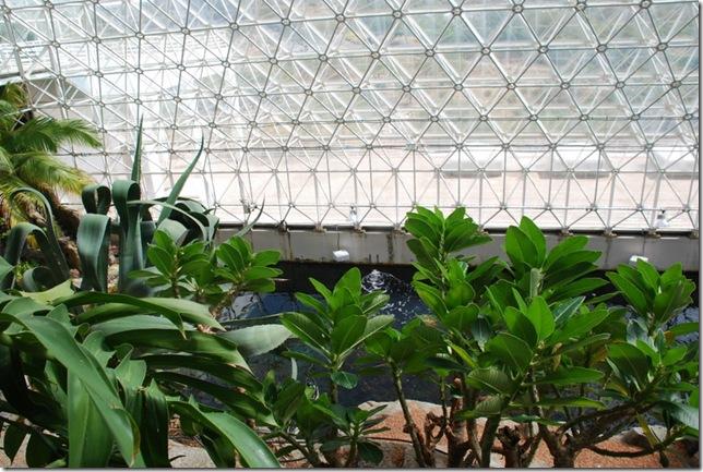 10-25-10 Biosphere 2 034