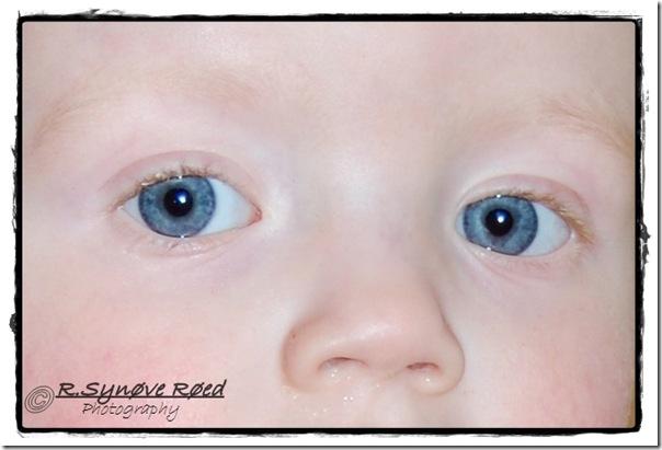 Vakre øyne H m navn