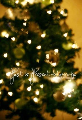 kerstboom enzo 052-2
