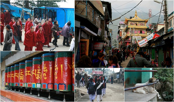 dharamsala_rishikesh_road