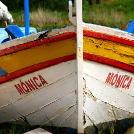 Mónica by Gil Reis - Transportation Boats ( explore, beaches, life, boats, travel, places )