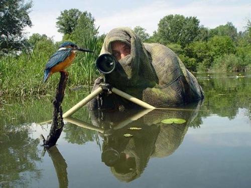 photographers (52)