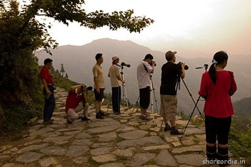 photographers (25)