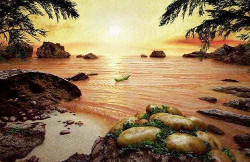 salmon-sea_1120555i