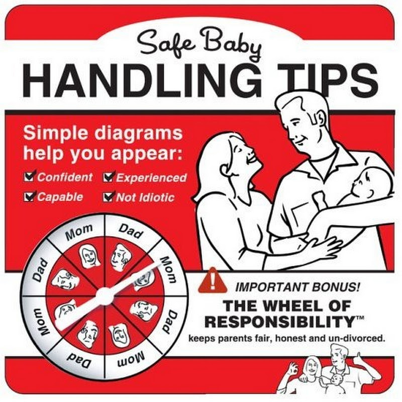 Illustrated baby handling guide for dumb parents