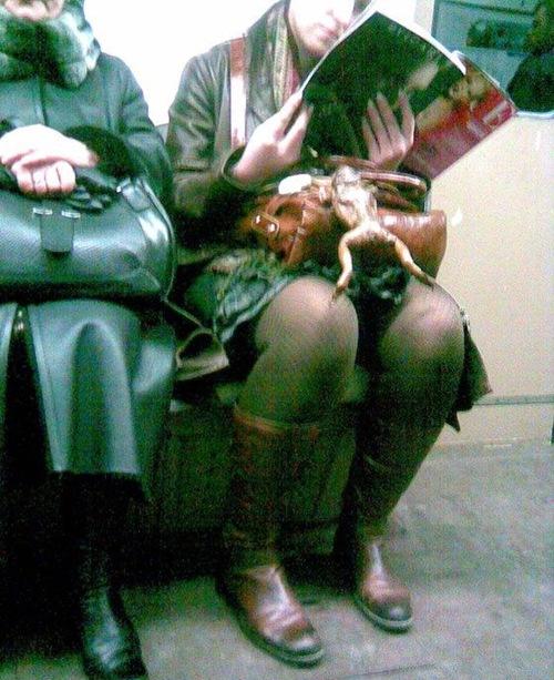 life-metro (10)