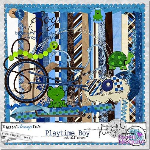 DSM_DBH_PlaytimeBoy_DSI_Preview