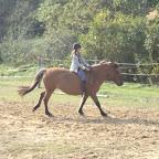 Flavie (jeune cavalière, galop 3). Elle ne possède pas son propre poney, mais est cavalière au haras et, de par sa petite taille, monte les poneys arrivés au haras dans le but d'être revendus.