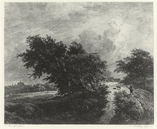 Ruisdael - The Bush