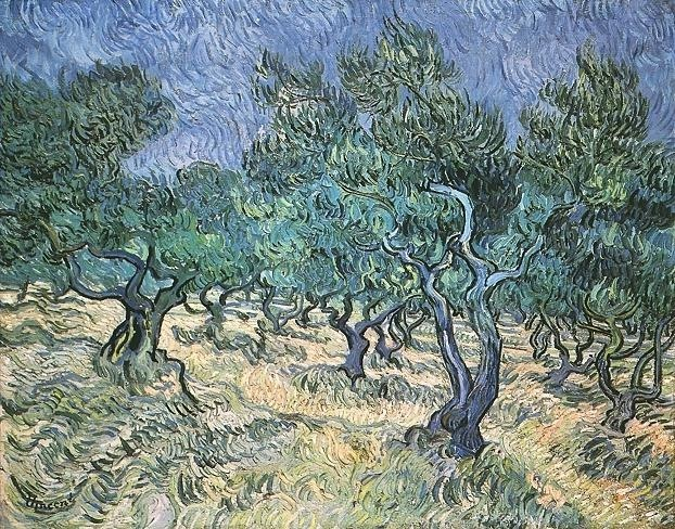Olive Grove, Oil on canvas