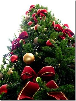 Christmas_tree_sxc_hu