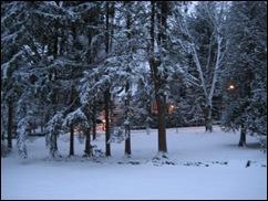 Snowy Twilight