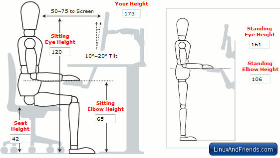 Correct Ergonomic Posture