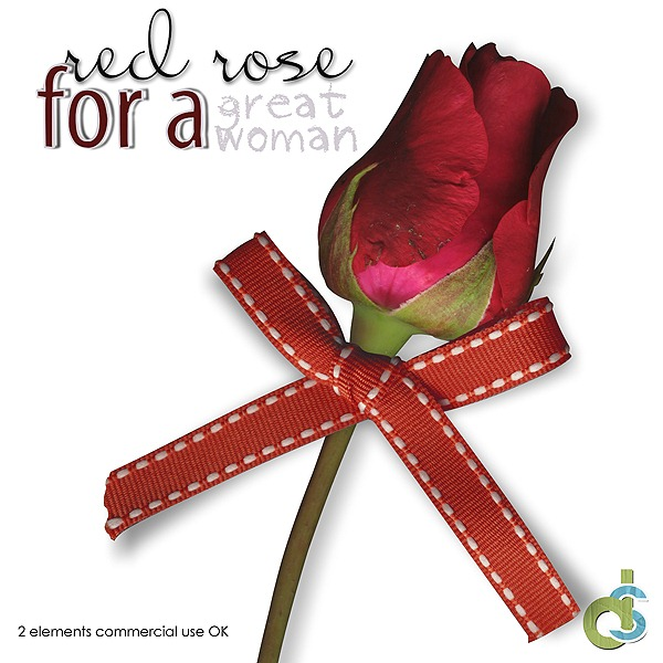 DSDesign_rosesandLeavesfreebie_Preview
