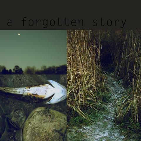 a forgotten story