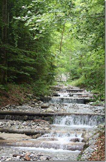 day 5 wissenbach falls (23)