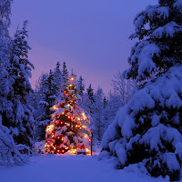 Navidad paisaje 020.jpg