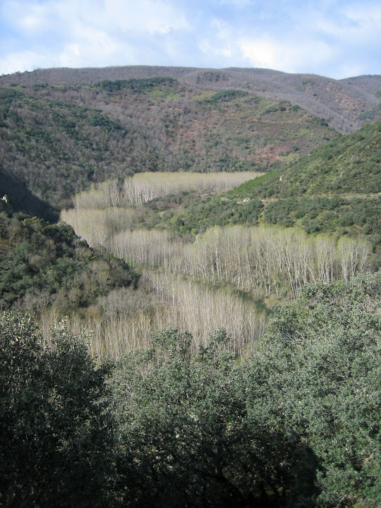 El desfiladero del Pelgo. rio Burbia