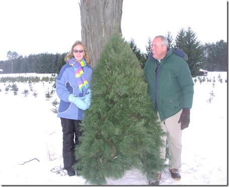 Christmas Tree 2008 021