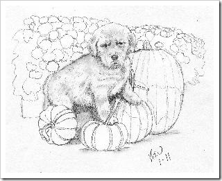 Puppy Ornament pencil sketch