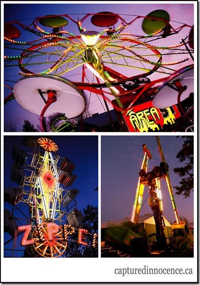 Forest Fair 1