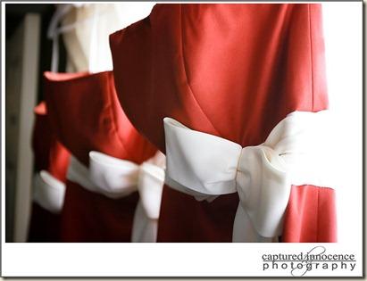 Lambton Middlesex Wedding Photography 6_resize