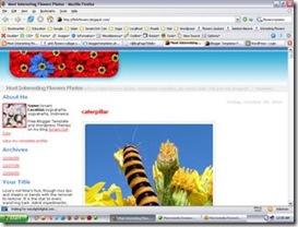 flowers-blogger-template