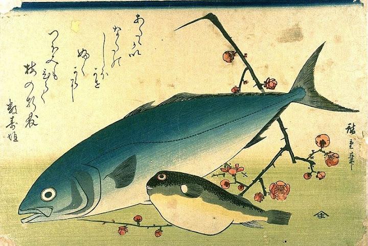 utagawa hiroshige, shoal of fishes, yellowtail and fugu
