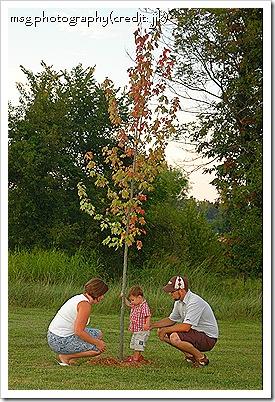 duncan's tree
