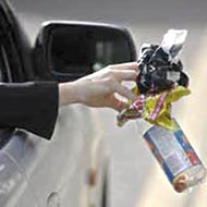 Car Litter
