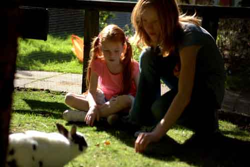 Be a Junior Zookeeper at Wiliamson Park, lancaster this summer