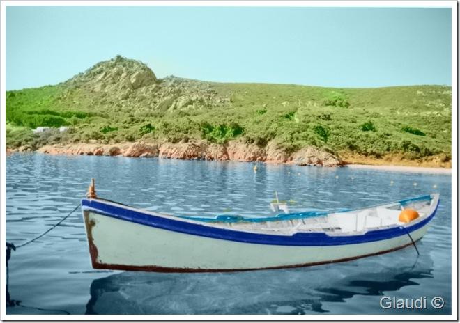 Barque Corse Result65