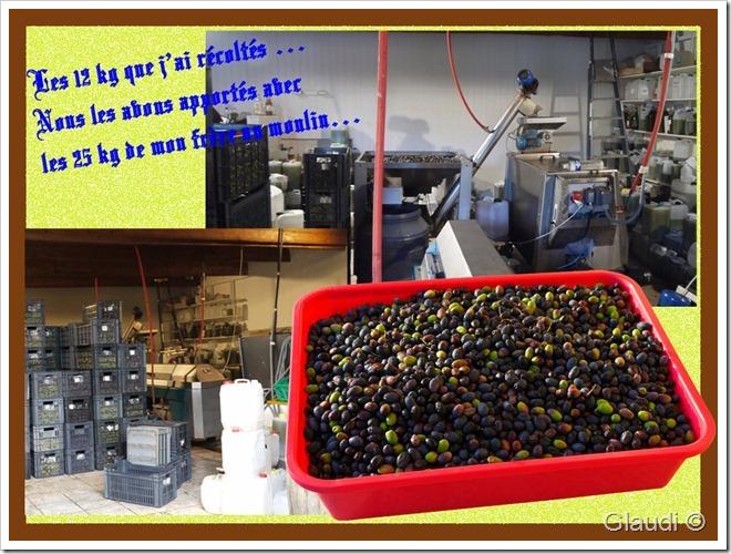Olive moulin