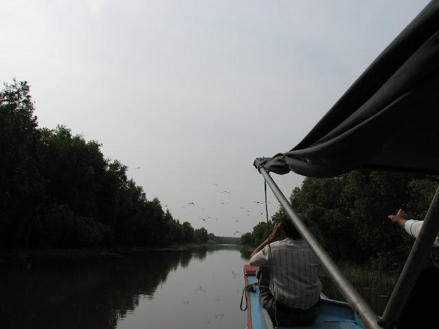 Chuyến đi Về Đồng Tháp - Miền Tây Sông Nước  IMG_0585