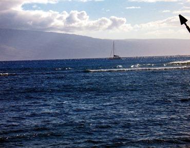 Hawaii_2010 238