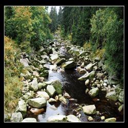 [pedras no caminho_250x250[3].jpg]