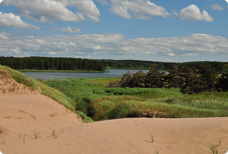 dunes at cavendish