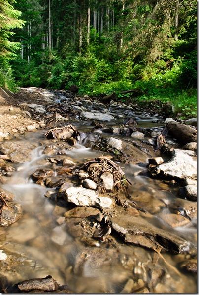 denial-stream-flow-3