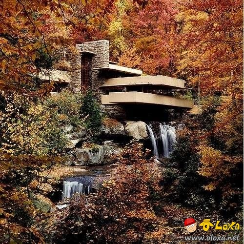 houses-built-in-nature-4