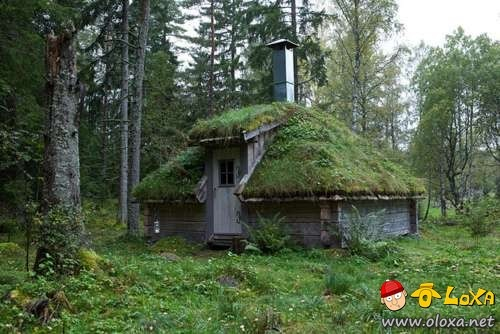 houses-built-in-nature-12