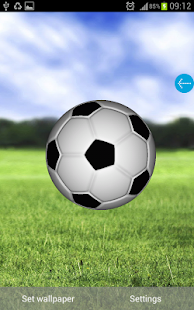 3D Football - screenshot