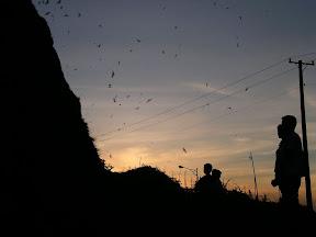 黃金山水蝠滿天