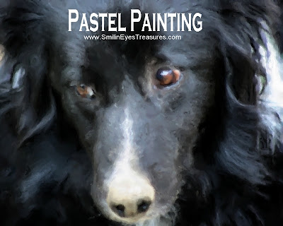 Border Collie Face Pastel Photo Painting